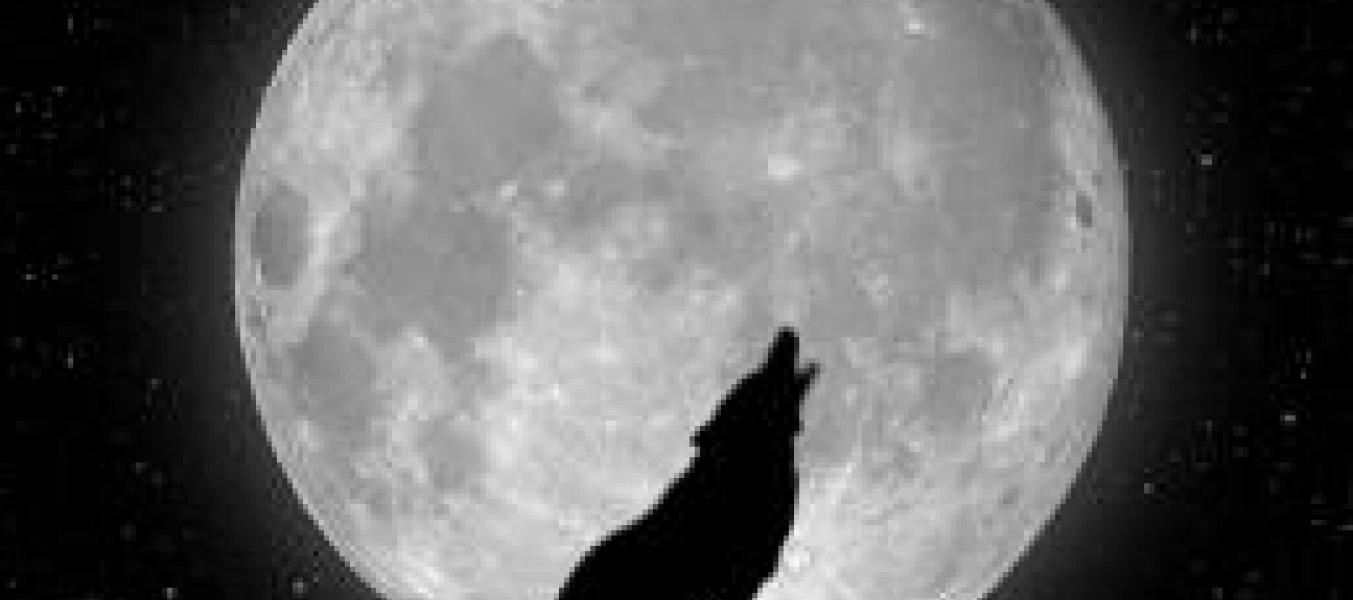 Marche avec la lune