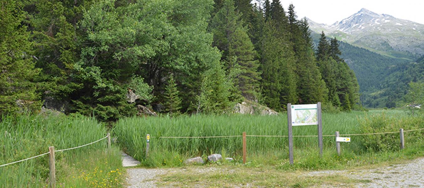 Sentier botanique de la rése