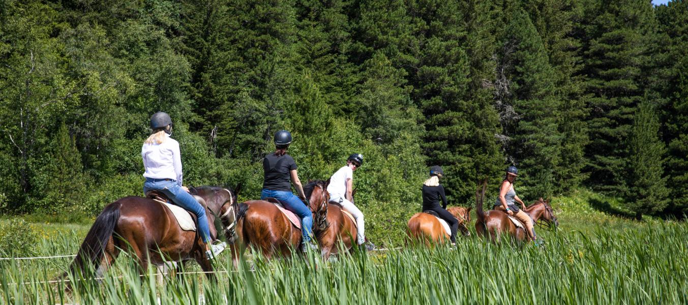 Balade à cheval journée
