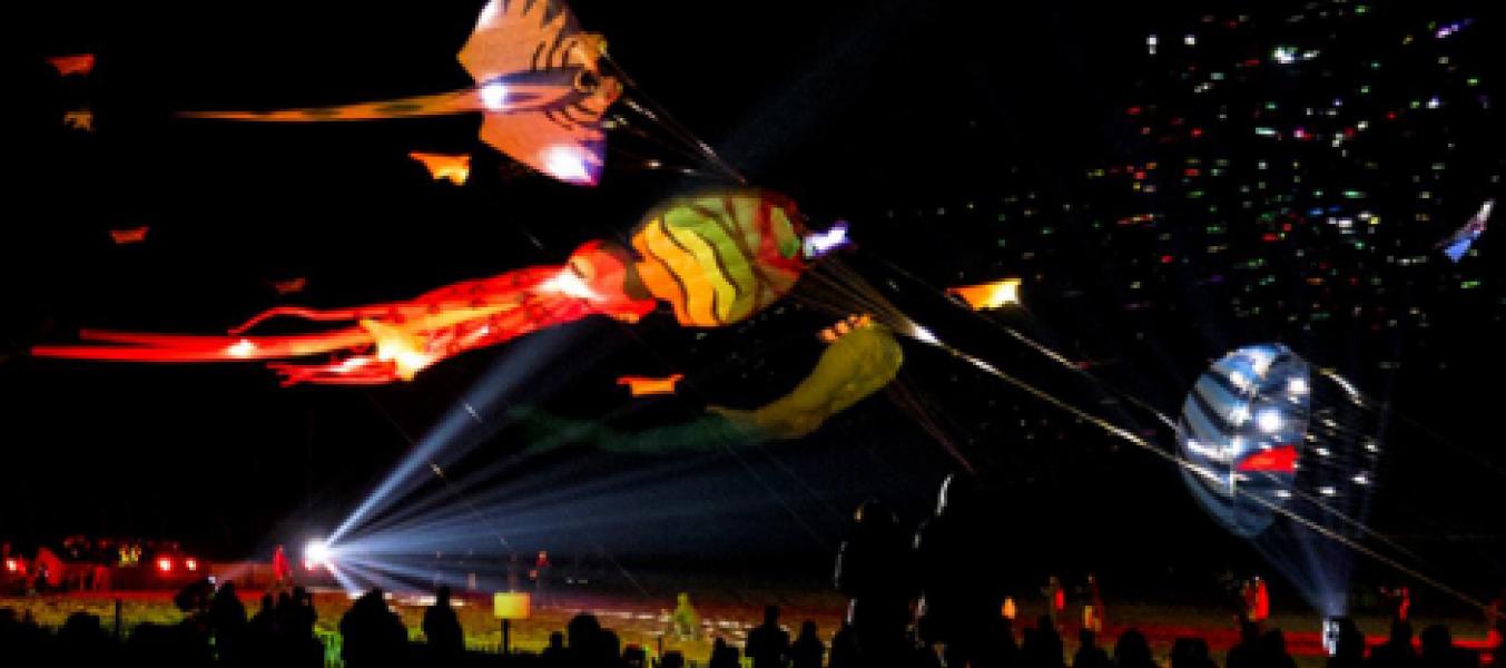 Spectacle de cerfs-volants : vol de nuit