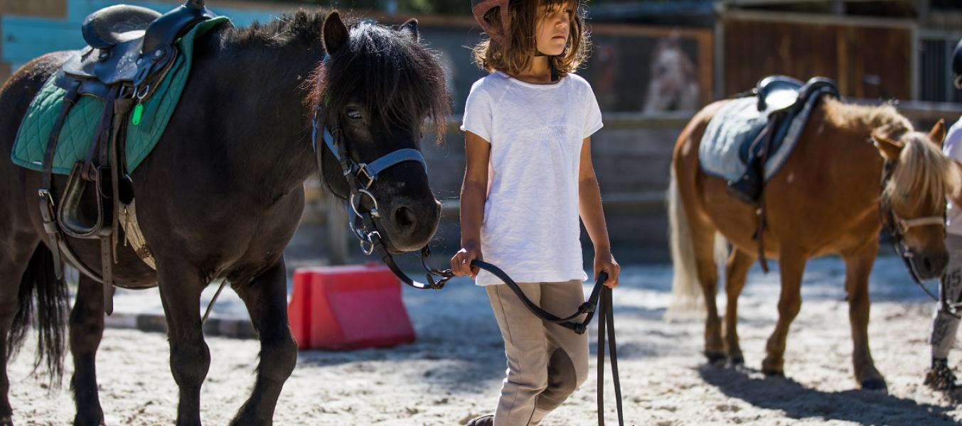 cours collectifs d'équitation