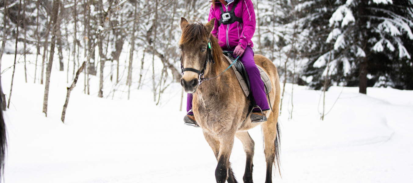 Balade à cheval autour du lac Tueda